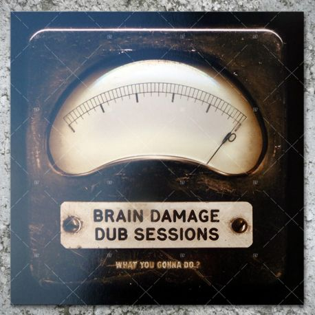 Brain Damage - Dub Sessions