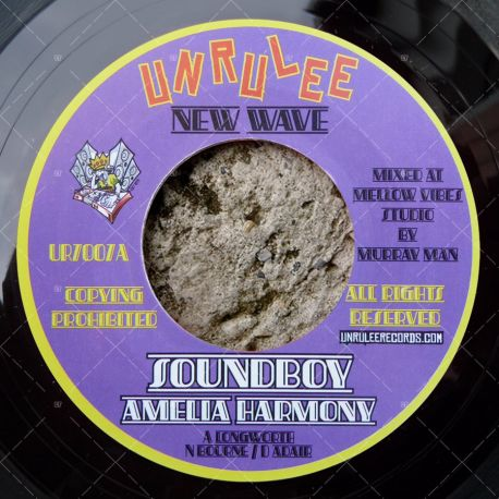 Amelia Harmony - Soundboy
