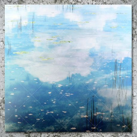 AMJ meets RSD - Sky Blue Love
