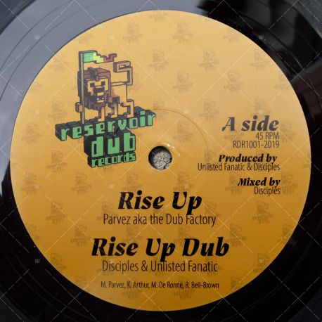Disciples & Unlisted Fanatic feat. Parvez - Rise Up