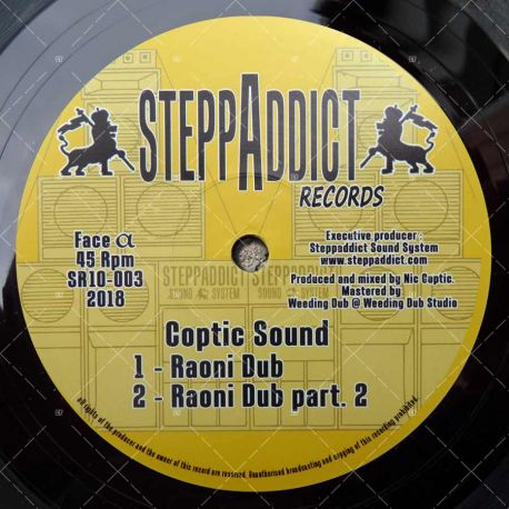 Coptic Sound - Raoni Dub / Wise Rockers - Higher Soul