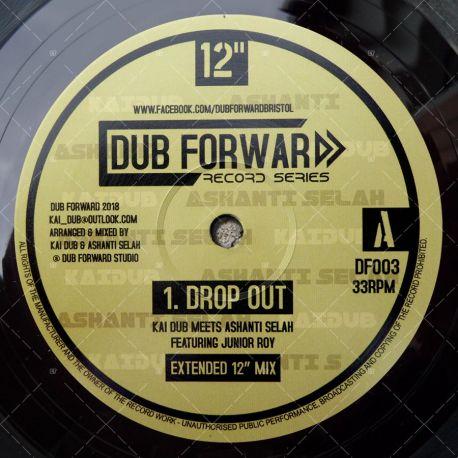 Kai Dub meets Ashanti Selah feat. Junior Roy - Drop Out
