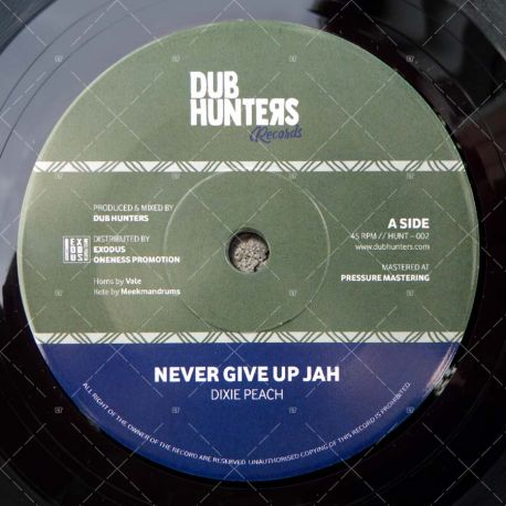 Dixie Peach - Never Give Up Jah
